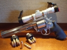 Smith & Wesson 500 10